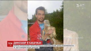 На Київщині з'явився  динозавр , який поїдав кабачки на сільському городі