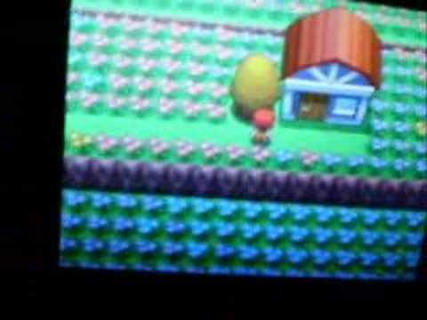 Pokemon Diamond And Pearl- Honey Trees
