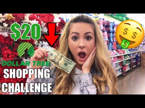 $20 DOLLAR TREE SHOPPING CHALLENGE
