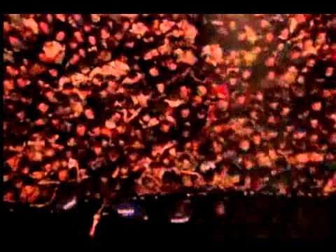 Pulp en Vivo - Common People / subtitulado