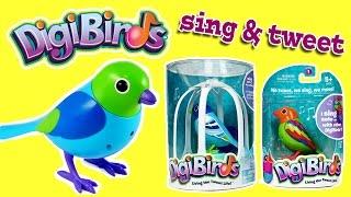 DigiBirds Singing and Tweeting Bird Toys