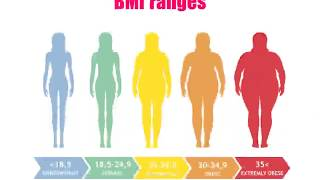 What is the ideal body weight