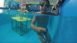 обучение плаванию детей с рождения
