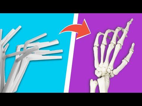 Как сделать скелет человека своими руками