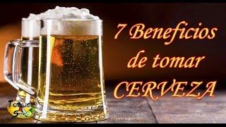 7 Beneficios de tomar CERVEZA