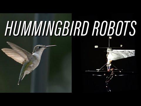 Hummingbird Robots 1, Drones 0