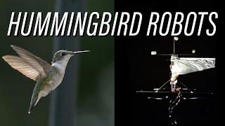Hummingbird Robots: Naturally Intriguing thumbnail