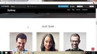 Sydney WordPress Theme Tutorial 3