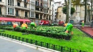 El Ayuntamiento de Bilbao coloca flores de invierno en los jardines municipales