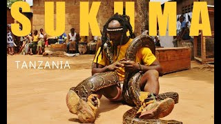 Repeat youtube video Sukuma African Dance (Tanzania pythons)