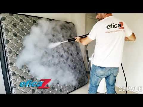 control-de-plagas---manejo-integrado-de-plagas---gestión-integral-de-plagas---manejo-ecológico