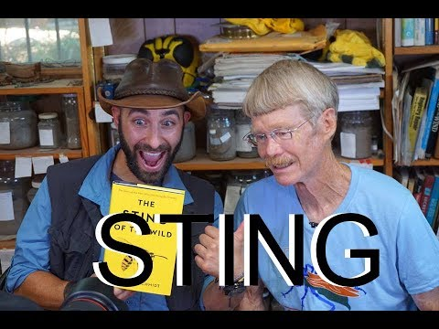 STING: Ft. Coyote Peterson and Justin Schmidt