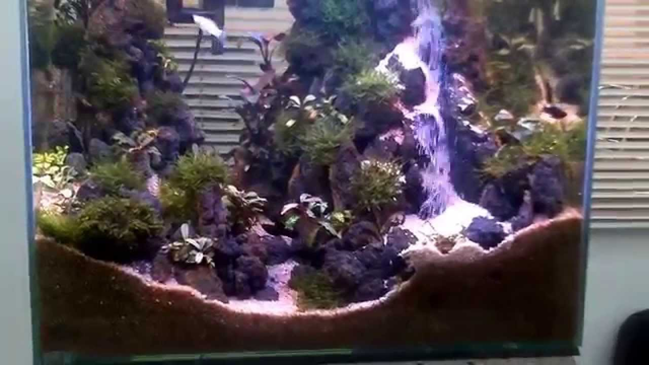 Best Aquascape with waterfall, DEX450 - YouTube