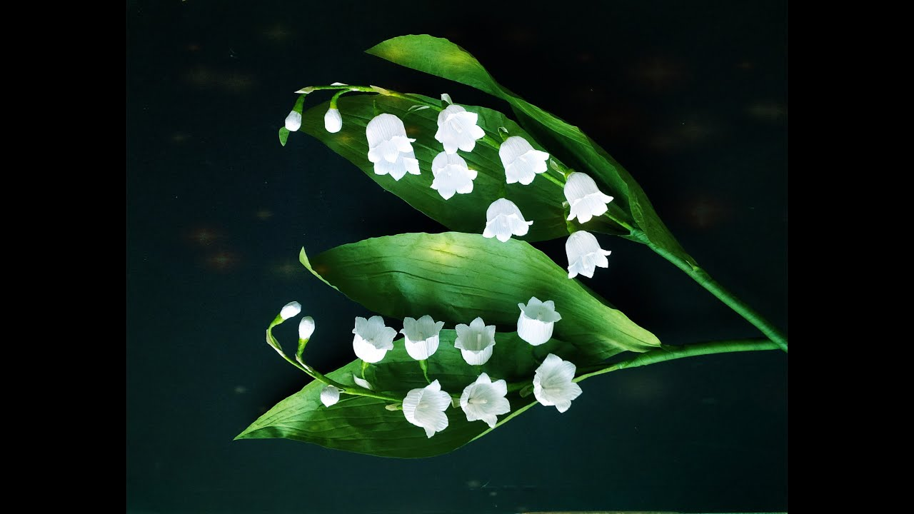 Lily Of The Valley From Crepe Paper Craft Tutorial Youtube