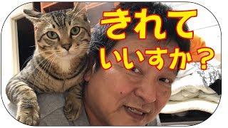 ぽんぷマジギレ?秋田犬のらんぷちゃん、頑丈なため、容赦なく猫パンチ...