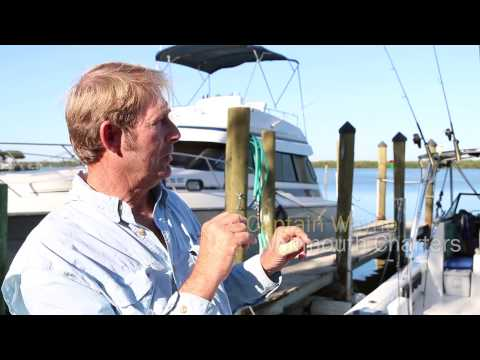 Visit Sarasota County Gulf Fishing Guide: Sarasota Bay