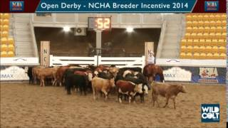 Spin the Cat & Grant Quigley - Open Derby, NCHA Breeders Incentive 2014