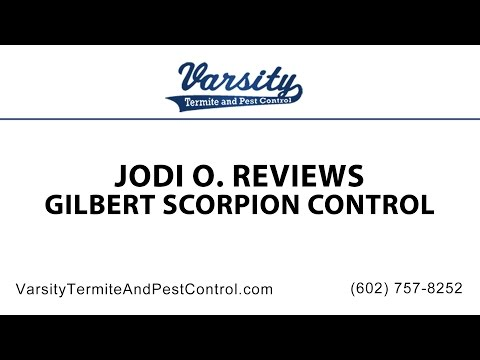 Jodi O Review of Gilbert Scorpion Control by Varsity Termite and Pest Control
