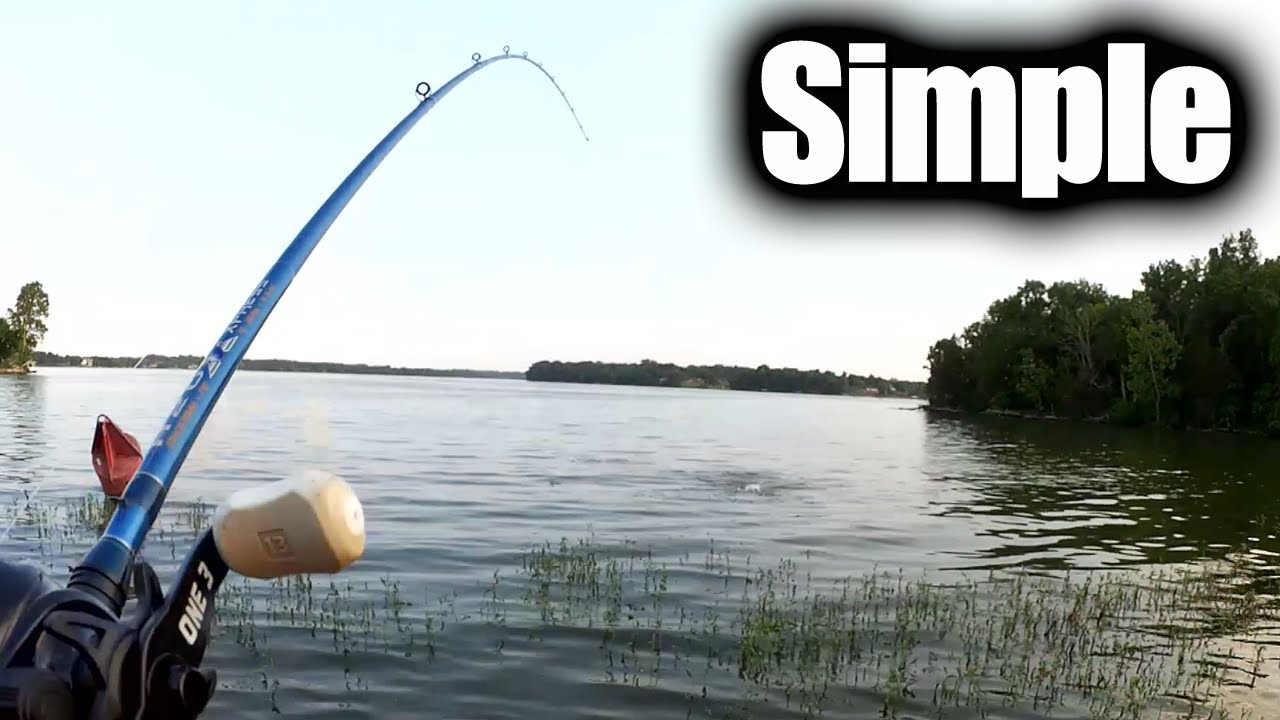 63d0f583690 One Simple Tip to Catch More Bass - Try Evening Bass Fishing! - YouTube