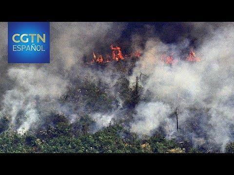 El presidente brasileño Jair Bolsonaro envía a militares para combatir los incendios