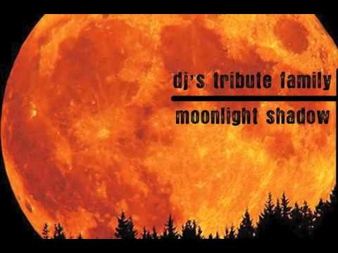 Dj's Tribute Family - Moonlight Shadow (Lori B. Radio Edit Remix)
