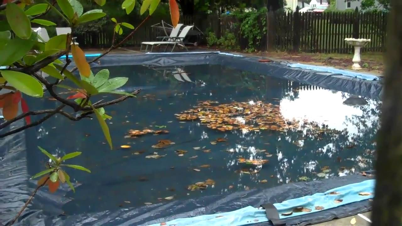 pool cover becomes duck pond part 2 youtube