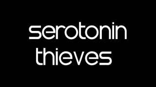 Скачать Tech House Mix 2015 Serotonin Sessions January 15 With Serotonin Thieves