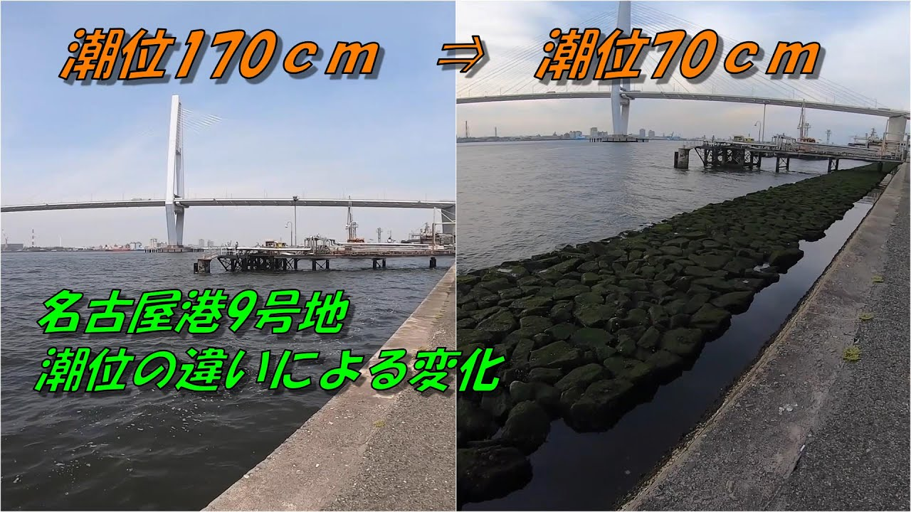 潮位 名古屋 港