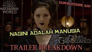 Dia NAGINI Si Siluman Ular | Fantastic Beasts The Crimes of Grindelwald Final Trailer Breakdown
