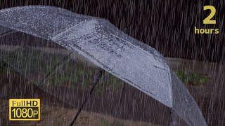 傘に当たる雨の音でリラックスする2時間