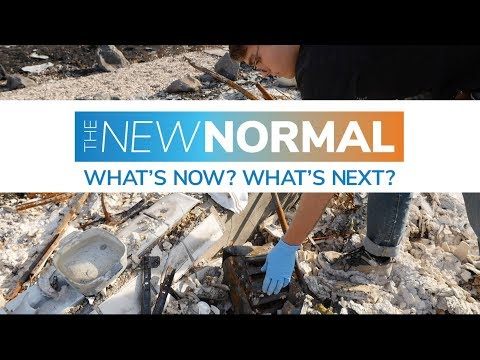 The New Normal: What's Now? What's Next?