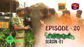 Sobadhara  | Season - 01 | Episode 20 | Sobadhara Rupavahini Thumbnail