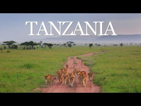Поездка в Танзанию. 2017 г.