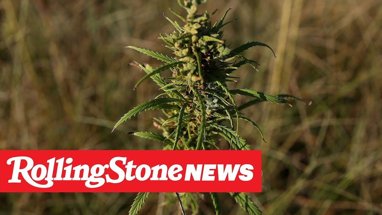 New Study Finds CBD Could Curb Heroin Addiction | RS News 5/23/19