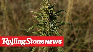 -study-finds-cbd-curb-heroin-addiction-rs-news-5-23-19