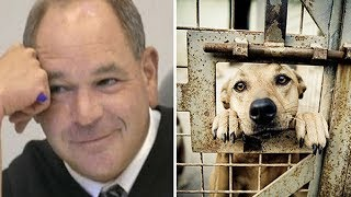 Judge Fed Up With Animal Abusers, Decides To Give Them Taste Of Their Own Medicine