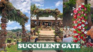 Amazing succulent gate  Cổng nhà bằng sen đá tuyệt đẹp  多肉植物  다육이들   Suculentas