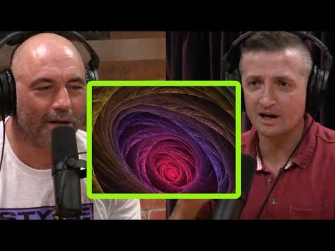 A Lot of Friends Fell Down the Racist Rabbit Hole   Michael Malice