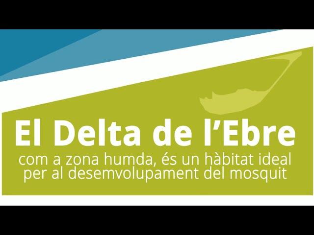 Campanya d'informació sobre el mosquit (ESCENA 1)