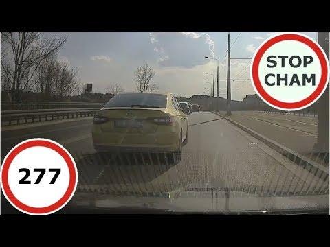 Stop Cham #277 - Niebezpieczne I Chamskie Sytuacje Na Drogach