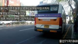 울산427번주행영상 법원~공원묘지입구까지