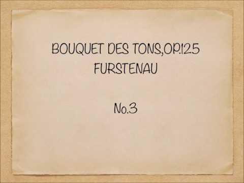 24 Etude (Bouquets des Tons) Op.125 No.3/Furstenau