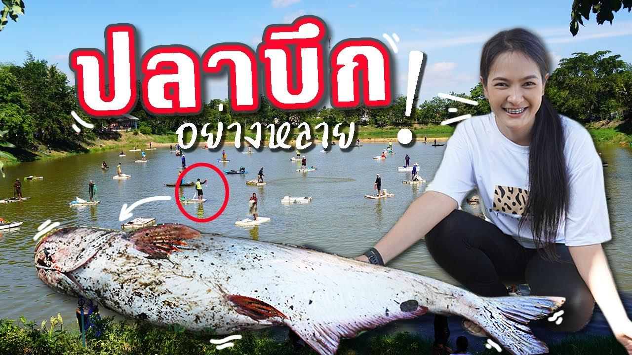 จับปลา บ่อนี้อย่างสนุก!! บึงทุ่งน้อย