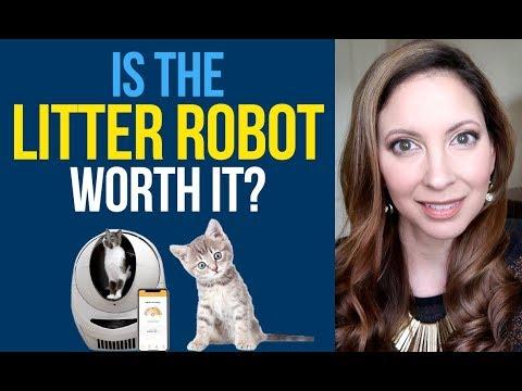 I SPENT $500 on a LITTER BOX? | 1 Year Review Litter-Robot Open Air Self-Cleaning Litter Box