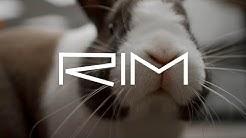 RIM : arrête de faire le MALIN (signé petit lapin malin)