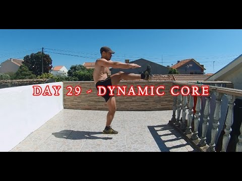 DAY 29 - 25 MIN FAT BURNER WORKOUT -  DYNAMIC CORE