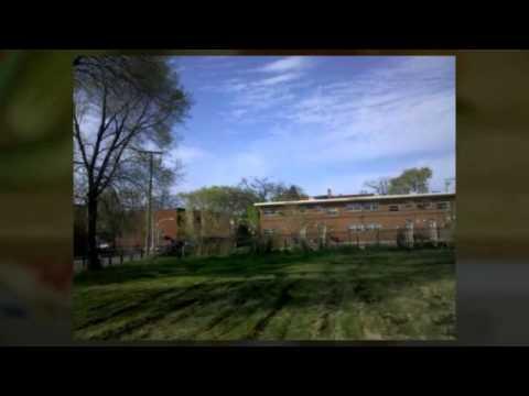 Wendell Phillips Academy High School Farming Process