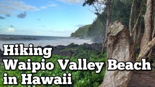 Waipio Valley Beach Hawaii | Adventure Strong