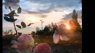 Soleado / Tengo todo el Tiempo del Mundo / Manolo Otero /  voz Aína