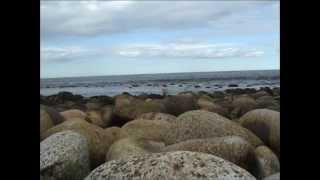 видео Можно ли купаться в Баренцовом море?